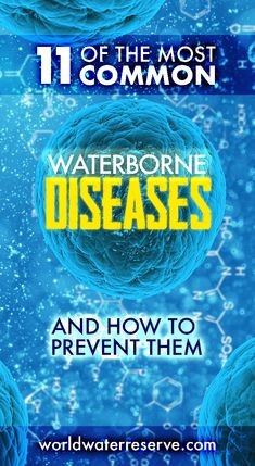 10 Best Harmful Bacteria found in Water images in 2019 | Common