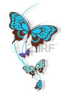 butterflies designb photo