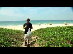 Educação Ambiental - Lixo e Coleta Seletiva - YouTube