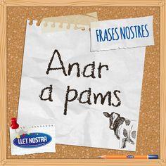 #frasesnostrers #Català #LletNostra