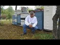 Beekeeping With Jason Chrisman - Youtube Channel preview