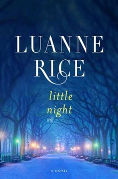 Little Night: A Novel by Luanne Rice, http://www.amazon.com/dp/0670023566/ref=cm_sw_r_pi_dp_wdE5pb09T5MCG