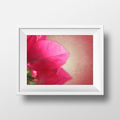 flower photography, flower girl gift, nature photography,fine art photograph,printable wall art,instant download printable art,bougainvillea by prajphotography on Etsy https://www.etsy.com/listing/256261342/flower-photography-flower-girl-gift