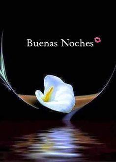 Buenas Noches  http://enviarpostales.net/imagenes/buenas-noches-272/ Imágenes de buenas noches para tu pareja buenas noches amor