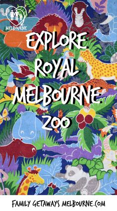 Situated right on the outskirts of the city, the Royal Melbourne Zoo has to be a Melbourne Attraction not to be missed. For more information just click the image. Melbourne Attractions, Melbourne Zoo, Airlie Beach, Central Business District, Family Getaways, Animal Species, School Holidays, Buy Tickets, Where To Go
