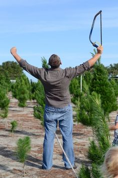 See what happened when we visited 'Christmas Trees of Wanneroo' in Western Australia to cut down our Christmas Tree. It was hot work! Western Australia, Westerns, Christmas Tree, Mountains, Nature, Plants, Travel, Teal Christmas Tree, Naturaleza