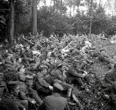Soldiers in Grass Kriegsfotos Walter Naumann nr.4 | | CC-BY-SA Europeana 14-18