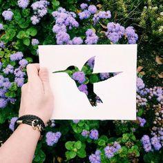 scherenschnitt lila blüten vogel kolibri