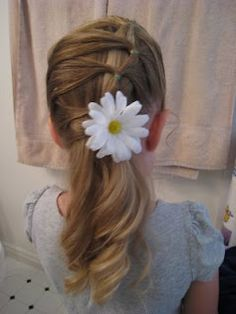 row of ponytails