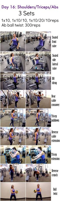 28 Days 2 Shed: Day 16-Shoulders/Triceps/Abs