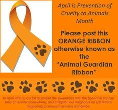 """April is Prevention of Cruelty to Animals Month. Please post this Orange Ribbon, otherwise known as the """"Animal Guardian Ribbon."""" In April, let's do our bit to spread the awareness with the hope that we can help an animal somewhere and enlighten our neighbors on just what's happening to innocent animals worldwide."""