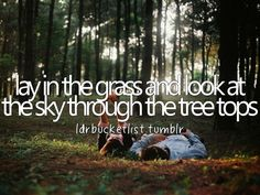 lay in the grass and look at the sky through the tree tops