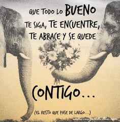 Smile Quotes, True Quotes, Words Quotes, Wise Words, Qoutes, Sayings, Spanish Quotes, Morning Images, Amazing Quotes