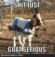 Just goat serious