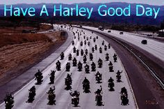 Harley Good Day :)