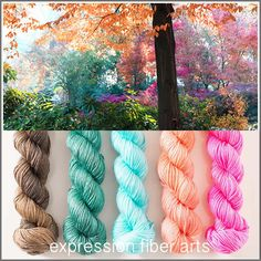 Forest Hues - luster merino tencel 5 skein mini yarn kit