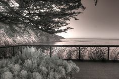 Esalen Institute Big Sur California infrared by Jane Linders Big Sur Coastline, Big Sur California, Infrared Photography, 5 Image, Great Photos, Monochrome, Pattern Design, Landscape, Abstract