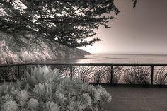 Esalen Institute Big Sur California infrared by Jane Linders Big Sur California, Infrared Photography, 5 Image, Great Photos, Monochrome, The Good Place, Wall Art, Landscape, Design Patterns