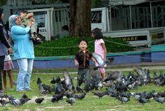 Maldives Maldives Tour, Lush Lawn, Mothers, Public, Tours, Popular, Play, Children, Young Children
