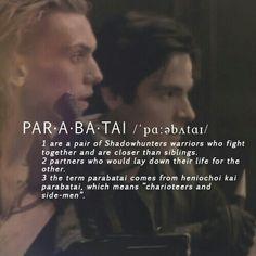 Alec lightwood and jace #parabatai