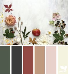 gathering autumn color pattern from Design Seeds