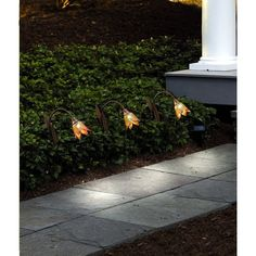 Tulip LED Solar Stakes (Set of 3) HoldAll SL2185C Listing in the Lighting,Garden, Yard & Plants,Home & Garden Category on eBid United States | 144997502