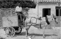 Greece Pictures, Old Pictures, Istanbul, Greek, Horses, Black And White, Animals, Lost, Memories