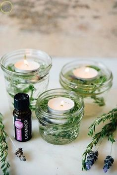 How For Making Candles In Your House - Solitary Interest Or Relatives Affair Easy Homemade Bug Repelling Candle Mint, Rosemary, Lemon Thyme Repels Mosquitos Bay Leaves-Repels Flies Lavender-Repels Moths, Fleas, Mosquitos Basil-Repels Flies And Mosquitos