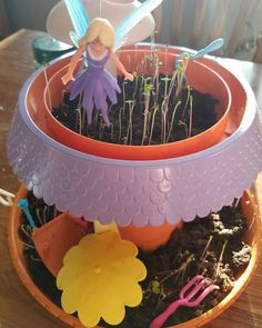 Temp's fairy garden in growing like crazy! My Fairy Garden, Child Love, Growing Plants