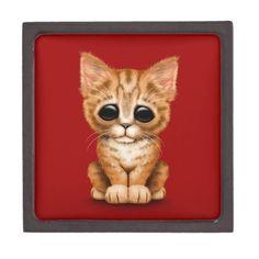 Sad Cute Orange Tabby Kitten Cat on Red Premium Keepsake Boxes