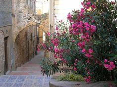 Montblanc, Tarragona. Un lugar para volver