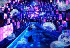 Magical world of Kenji Miyazawa fairy tales and Asami Kiyokawa take over Sumida Aquarium Need Somebody To Love, Aquarium, Tokyo Museum, Happiness Challenge, Writers And Poets, Beauty Magazine, Environmental Art, Light Art, Japan Travel