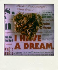 Homemade Roses des sables and Politics.