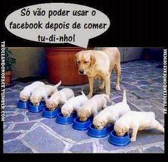 Trollando no Face Oficial: SÓ DEPOIS DE COMER