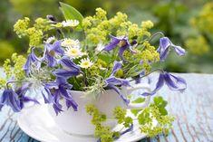 Sussex Flower Farm Cut Flowers