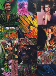 Matthew Williamson Moodboard of the Amazonia Collection. The sights, sounds and spirit of the rainforest spring forth from the studio's mood board in an abundance of psychedelic colour. Click to shop Amazonia Collection.