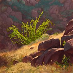 Harsh & Delicate Big Bend by Dennis Farris Oil ~ 20 x 20