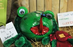 Frog decorated pumpkin at The Big E!