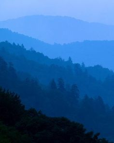 Newfound Gap, Great Smoky Mountains National Park, Tennessee. Photo by Michael Melford