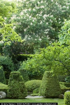 This garden in Madrid was designed by Christopher Masson and photographed by Jerry Harpur.