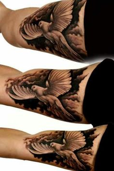 Beautiful Dove tattoo, probably change the face though