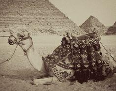 Camel / Black & White, Etsy.