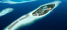 Vilamendhoo Island Resort Maldives Vacation Packages, Maldives Holidays, Maldives Hotels, Maldives All Inclusive, Maldives Travel, Maldives Destinations, Visit Maldives, Maldives Resort, Resort Spa