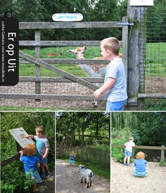 leukste kinderboerderijen belgie