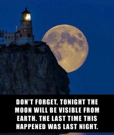 8+ Hilarious Reactions To The Disappointing Supermoon   Bored Panda  Oh watch it's falling off that cliff.......