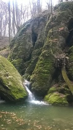 Ördög-árok Budapest Hungary, Homeland, Mother Nature, The Good Place, Trips, Waterfall, Amazing, Places, Travel