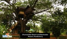 Top 7 Romantic Tree House Resorts In India Know more holidays packages visit : http://www.indiafly.com/