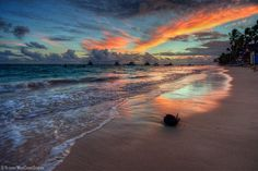 A coconut washed up on the beach at Bavaro, Punta Cana, Dominican Republic