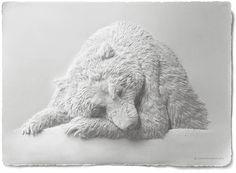 Les magnifiques créations en papier de l'artiste canadienCalvin Nicholls(facebook), qui réalise des sculptures en bas reliefs d'une délicatesse incroyabl