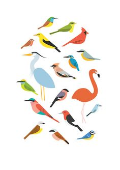 A5 Birds print by Sarah Abbott